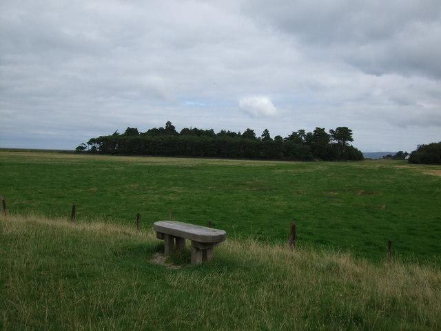 Wooden bench at Glan y Mor Elias