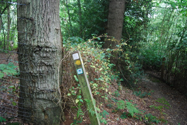 Tunbridge Wells Circular Path waymarker, Snipe Wood