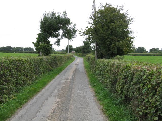 Lane At The Thorne