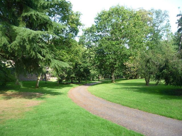 Mid Devon : Knightshayes Court, Driveway & Trees