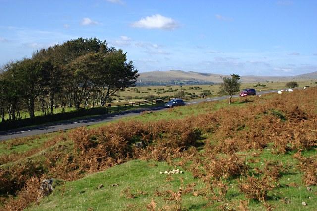 The Road Onto Dartmoor