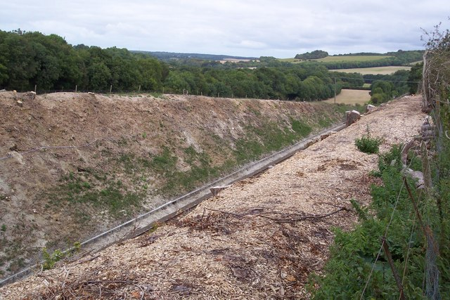 Railway Cutting near Square Wood