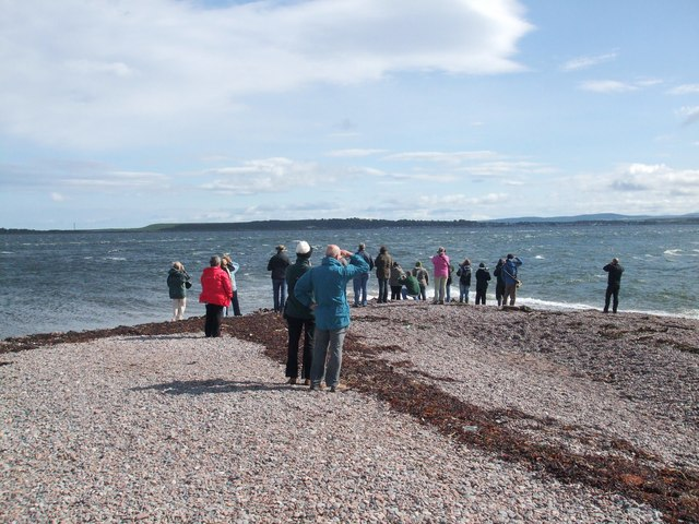 Hopeful Dolphin watchers at Chanonry Point