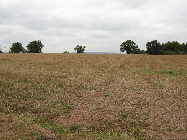 Stubble Field Near Bainstree Cross