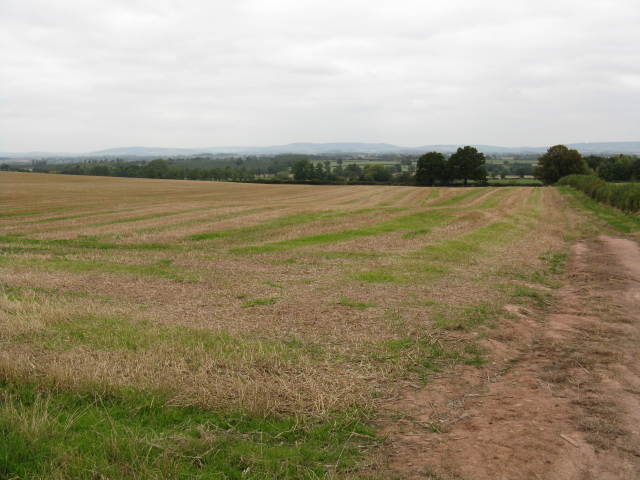 Fields Near Westhope Hill