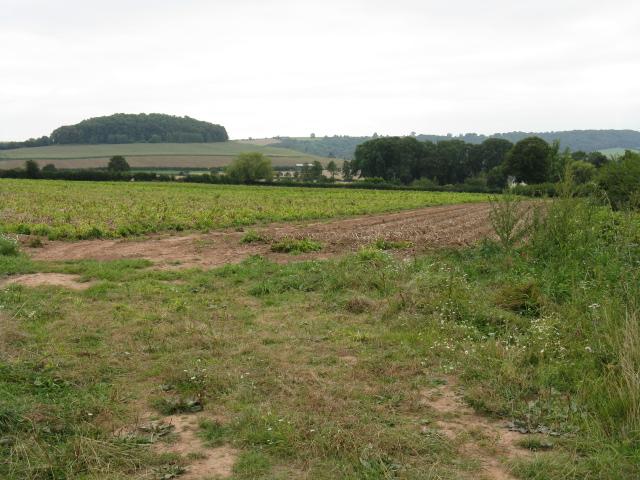 Fields Of Gattertop Farm