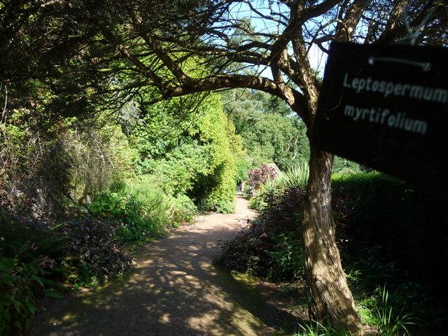 Mid Devon : Knightshayes Court, Allotment Path