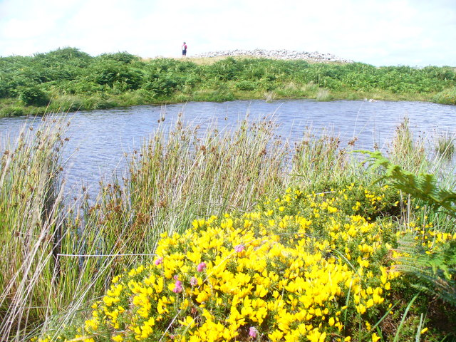 Moorland Pool on Cefn Bryn