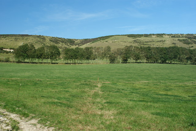 Godlingston Hill, Dorset