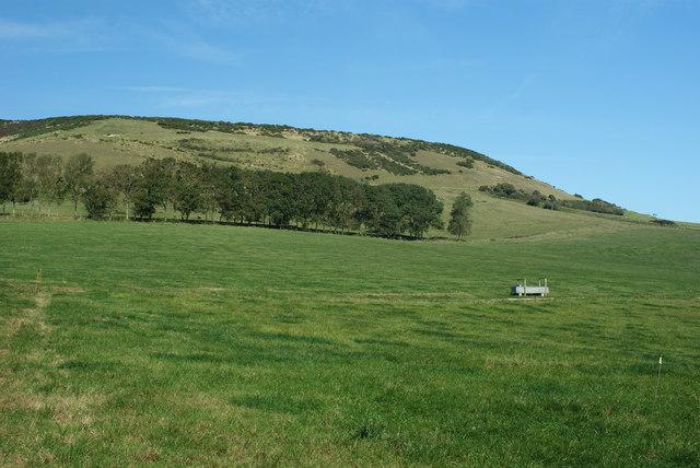 Godlingston Hill, Dorset