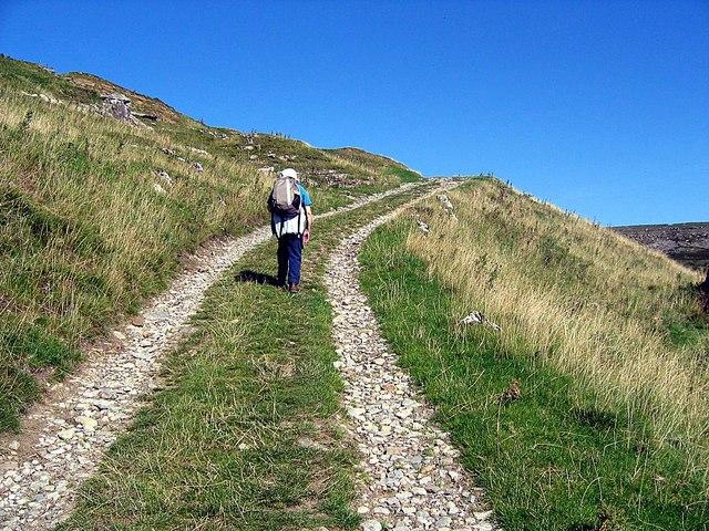Track rising from Telfit Farm towards Munn End Gate