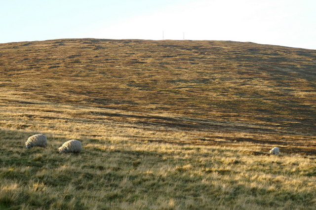The southern slopes of Sothers Field