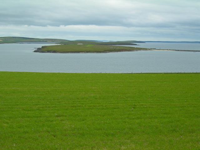 Verdant grassy field with Lamb Holm beyond