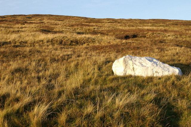 Quartzite boulder on Sothers Field