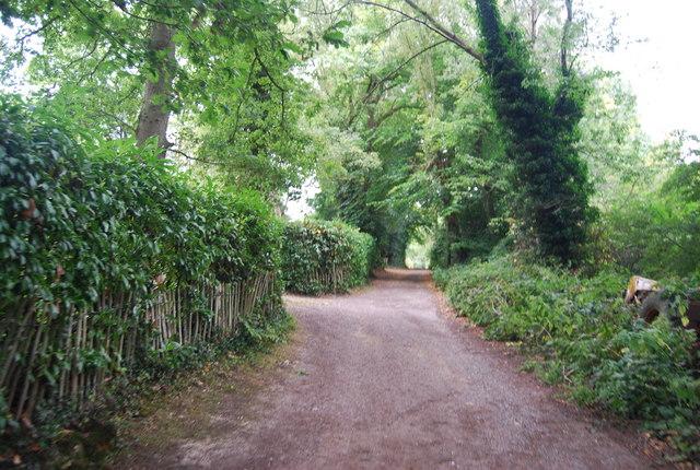 Tunbridge Wells Circular Path - Woodlands near Henwood Green