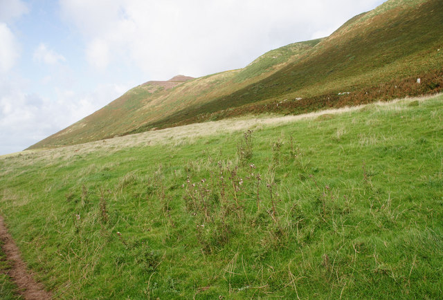 Lower Track to Hillend