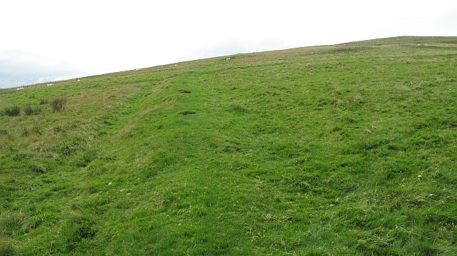 Old field boundary, Pike  Fell