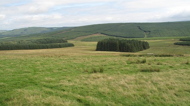 Plantations, Pike Fell