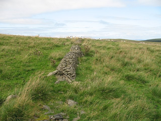 Ruined enclosure, Pike Fell