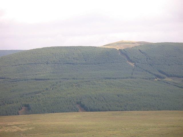 Wyndburn Hill