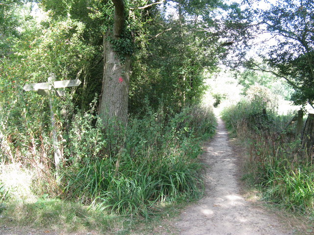 Footpath junction with bridleway to Gravatt's Farm