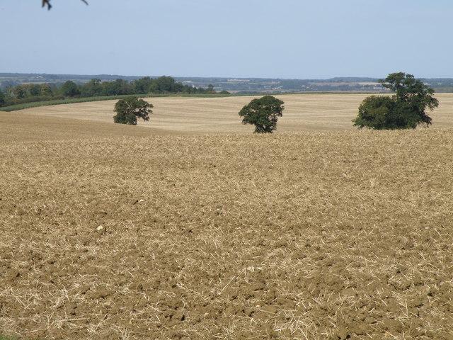 East Northamptonshire, Warren lane