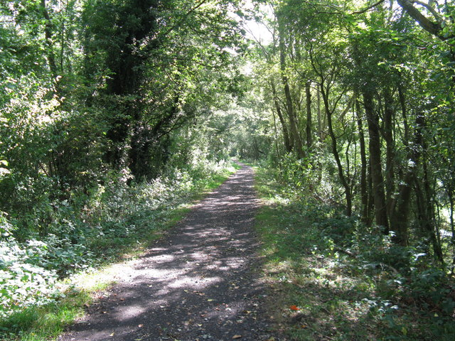 Downs Link path SE of Rudgwick
