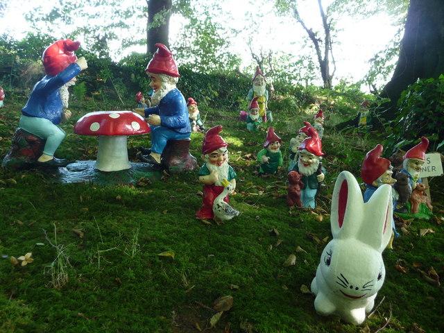 North Devon : The Gnome Reserve, Gnomes & Rabbit