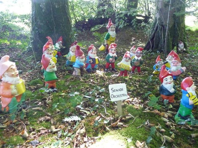 North Devon : The Gnome Reserve, Gnome Senior Orchestra