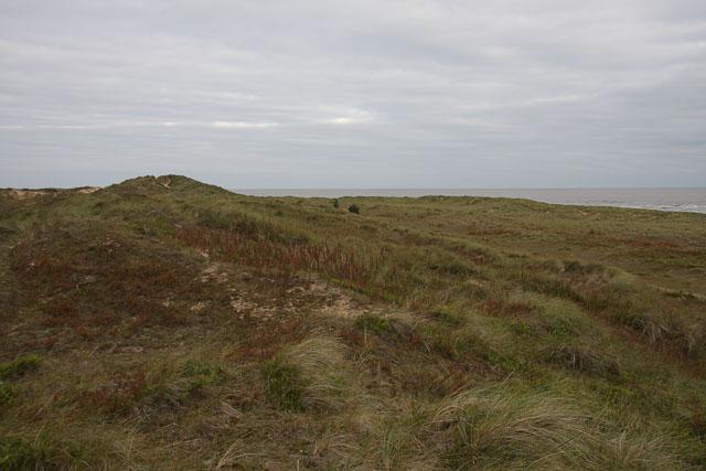 Burnham Overy dunes