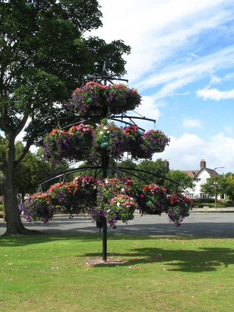 Port Sunlight (Hanging Baskets)