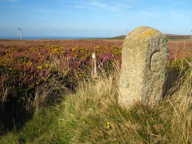 Boundary stone on Carnyorth Common