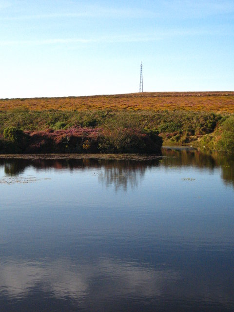 Pond on Truthwall Common
