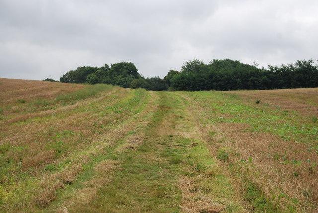 Tunbridge Wells Circular Path - heading south across a field near Henwood Green