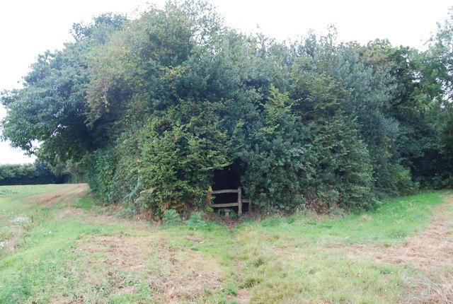 Stile on the Tunbridge Wells Circular Path near Henwood Green