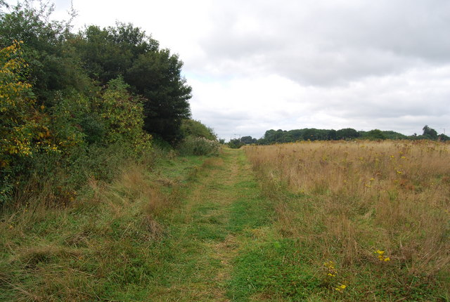 The Tunbridge Wells Circular Path follows a hedge near Henwood Green