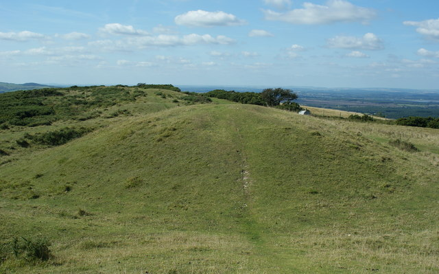 Barrows on Nine Barrow Down, Dorset