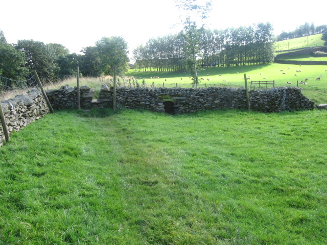 Ribble Way near Cragghill Farm