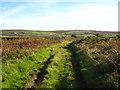 SW3932 : Farm track at Boslow by Rod Allday