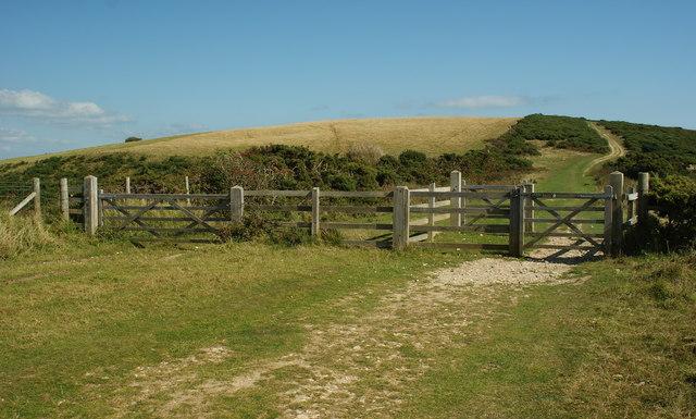 Gates on Brenscombe Hill, Dorset