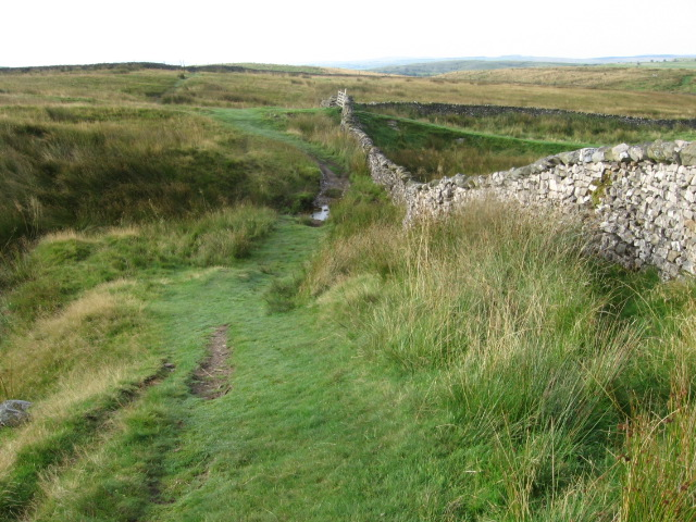 Ribble Way towards Stainforth
