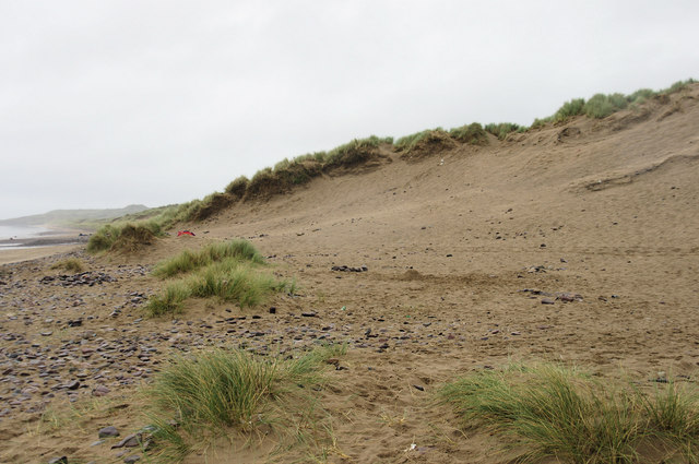 Llangennith Burrows -the Edge of the dunes