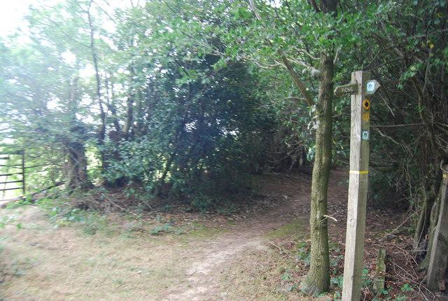 Waymarker for the Tunbridge Wells Circular Path near the Pembury Bypass