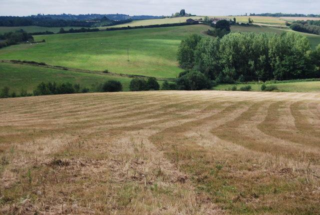 Tunbridge Wells Circular Path - heading south from Pembury across a ploughed field