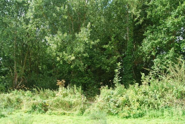 Stile where the Tunbridge Wells Circular Path meets Chalket Lane