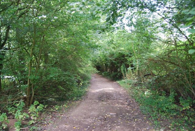Tunbridge Wells Circular Path  heads SW from Chalket Lane