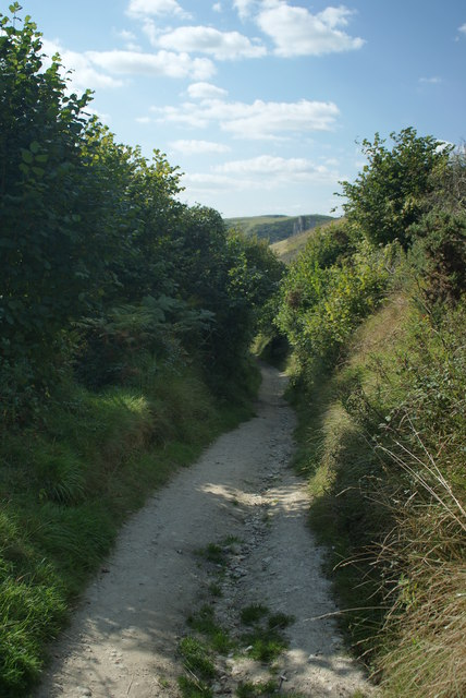 Bridleway on Challow Hill, Dorset