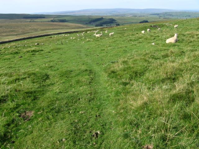 Footpath towards Henside
