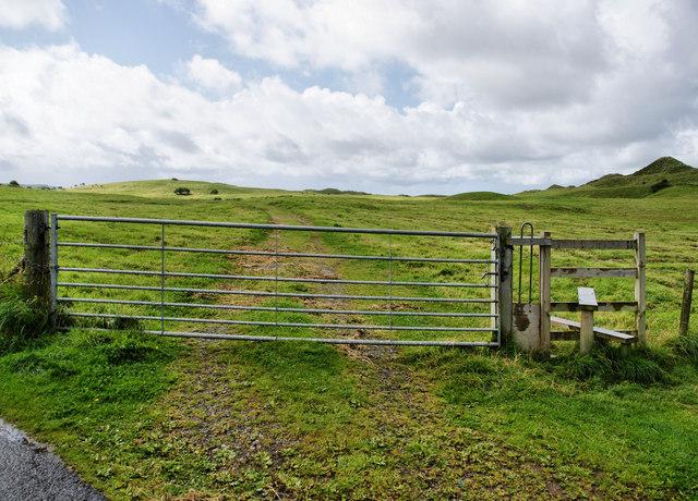 Gateway, Llangennith Burrows