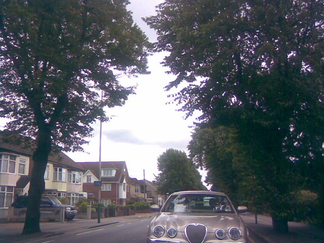 Pleasant tree-lined section of Mawney Road